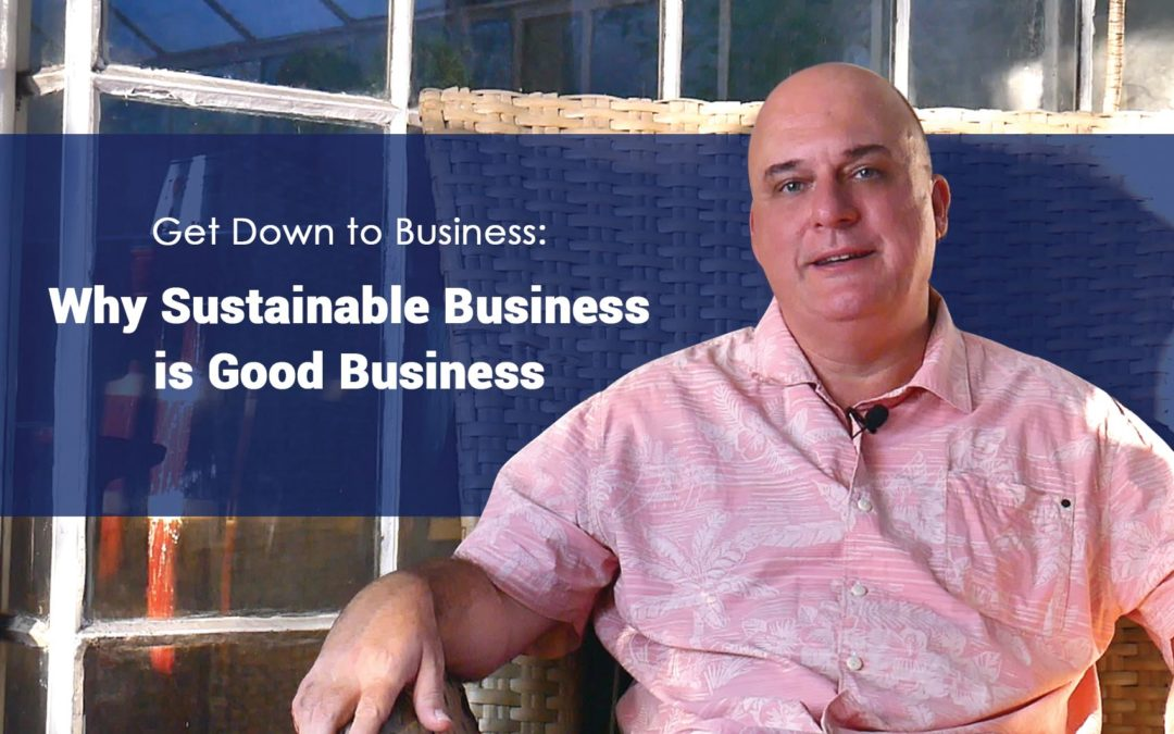 Why is sustainable business good business?